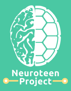 NeuroteenProject final picture